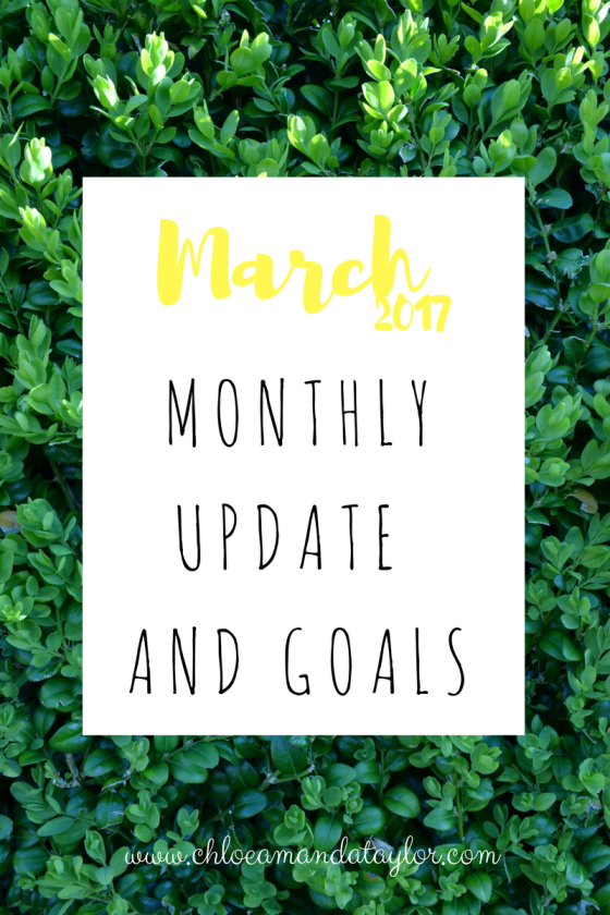 March 2017, update and goals